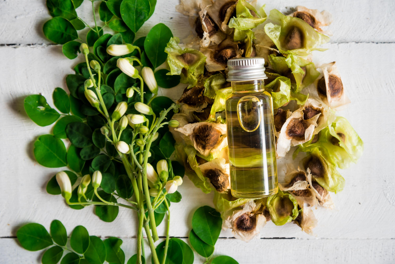 Moringa Öl und Samen
